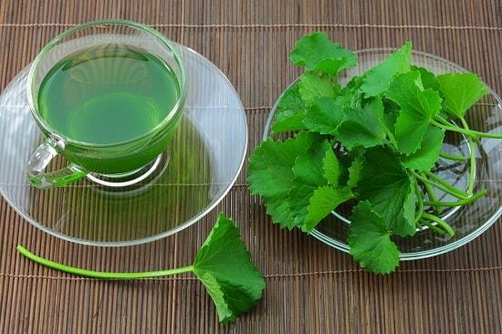 Trà rau má tốt cho sức khỏe