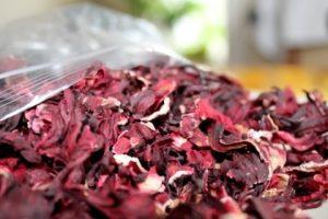 Sấy khô trà hoa hibiscus