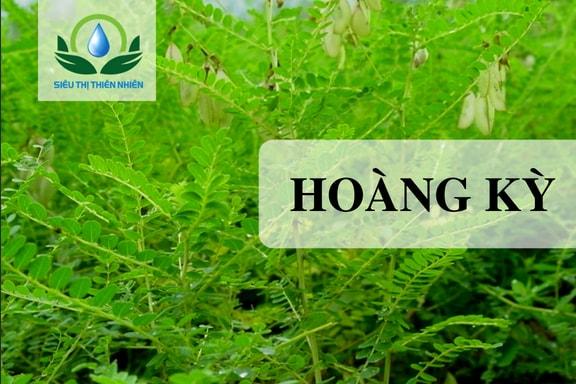 Hoang-ky