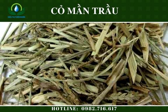 co-man-trau-say-kho-3
